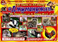 Афиша Ижевска — Выставка животных «Джуманджи»
