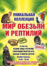 Афиша Ижевска — Выставка «Мир обезьян и рептилий»