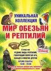 Выставка «Мир обезьян и рептилий»