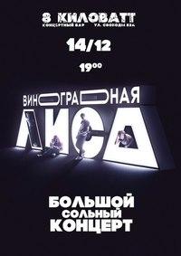 Афиша Ижевска — Сольный концерт группы «Виноградная Лиса»