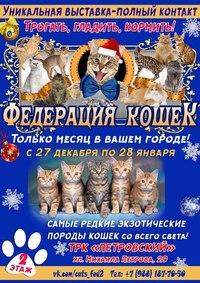 Афиша Ижевска — Выставка «Федерация Кошек»