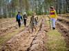 Афиша Ижевска — Акция «Лучшая мимоза — это лес»