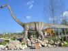 Афиша Ижевска — Палеонтологический лагерь «По следам динозавров»