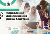Онлайн-курс «Управление для снижения риска бедствий»