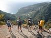 Афиша Ижевска — «Посади Лес» для отпускников