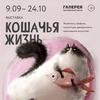 Выставочный проект «Кошачья жизнь»