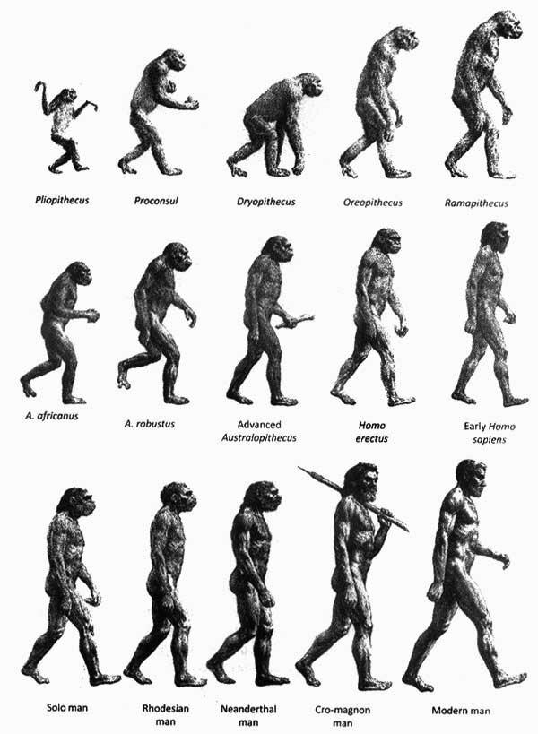 Лекция «ПАН И МОРЛОК: биологическое будущее человека»