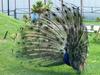 Ижевск — Зоопарк Удмуртии