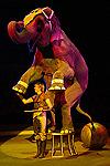 Международный фестиваль циркового искусства - 2009