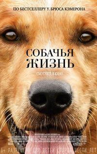 Афиша Ижевска — Собачья жизнь