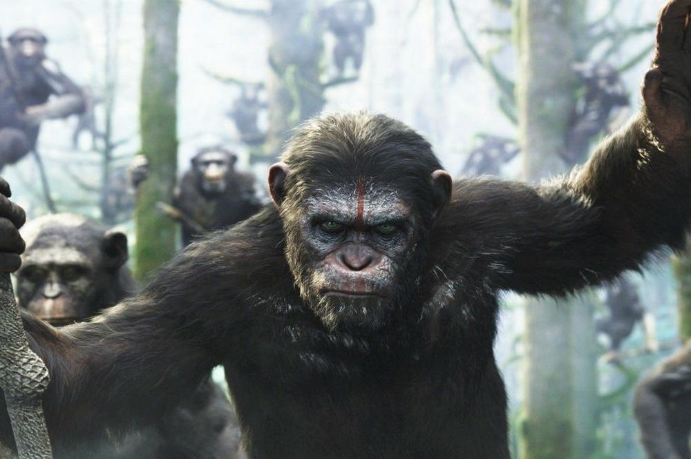 Куда пойти на неделе: «Планета обезьян: Война», ночь в Зоопарке, Open Air «Эктоника — 2017» и ещё 6 идей