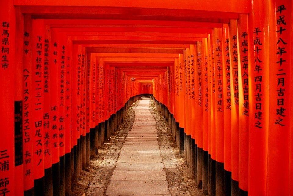 Япония | Путешествие