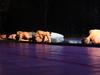 Афиша Ижевска — Шоу под дождём 4 | Как это было?