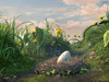 Афиша Ижевска — Славные пташки