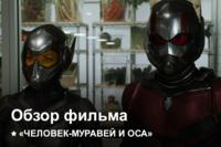 Афиша Ижевска — Человек-муравей и Оса | Как это было?