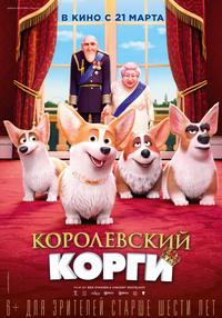Афиша Ижевска — Королевский корги