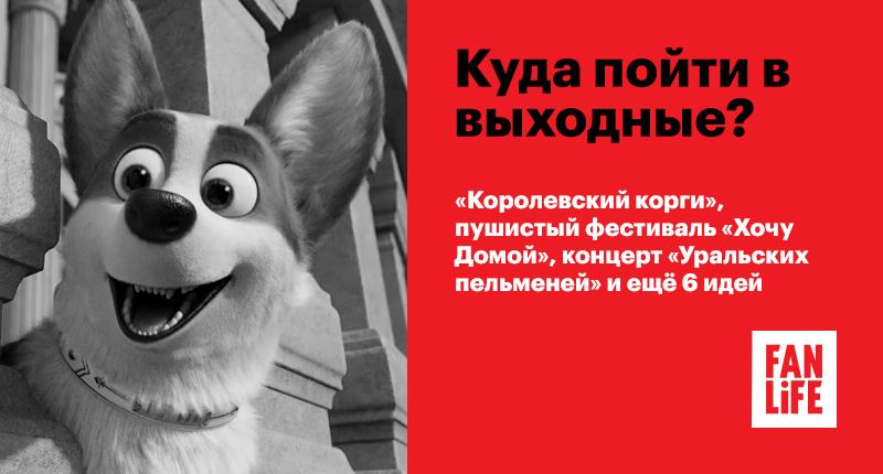 Афиша Ижевска — Куда пойти в выходные: «Королевский корги», пушистый фестиваль «Хочу Домой», концерт «Уральских пельменей» и ещё 6 идей
