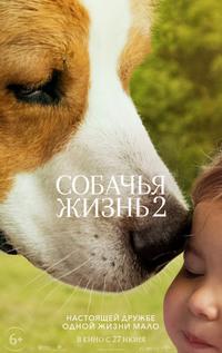 Афиша Ижевска — Собачья жизнь 2